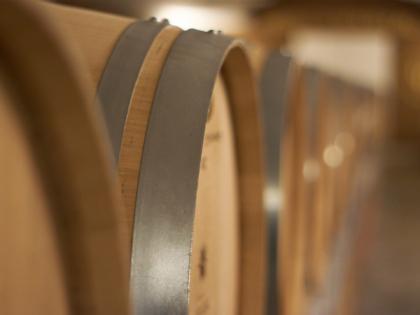 Wineleven - Il vino nel legno e nella botte